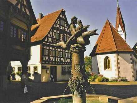 2-Zimmer-Whg in Plochingen sucht berufstätige FRAU im mittleren Alter!