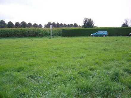 Restgrundstück 490 qm , Blick aufs Feld