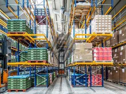 NEUBAU ✓ RAMPE + EBEN ✓ Lager-/Logistikflächen (4.000 m²) & Büroflächen (400 m²) zu vermieten