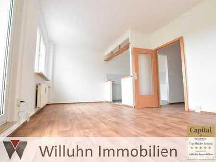 Große sanierte Wohnung mit Balkon sucht Familie