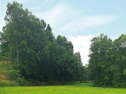 Online.Auktion: 0,6 ha Forstliegenschaft (O-367)
