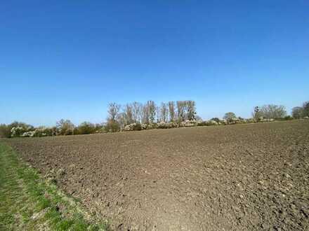 Gelegenheit! Bestes Ackerland mit Brunnenzugang in bevorzugter landwirtschaftlicher Lage