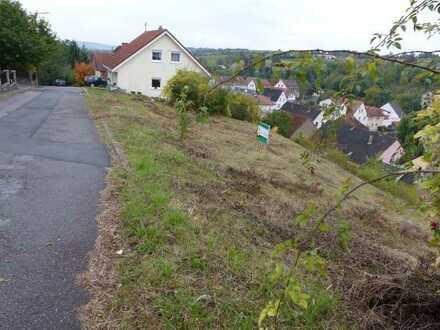 *NEUER PREIS* Wohnen mit Weitblick - Baugrundstück in unverbaubarer Südhanglage
