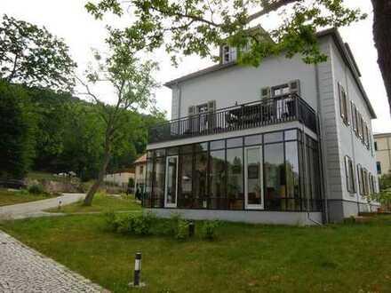 Pillnitz / Hosterwitz! Schöne helle 4 RWG im EG mit Terrasse und Wintergarten!