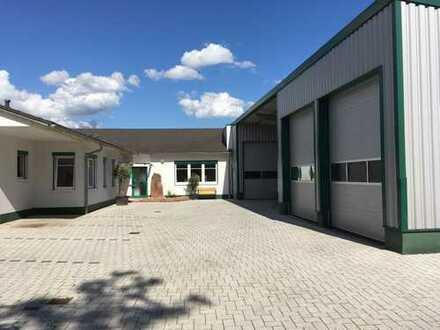 Helles, modernes, komplett renoviertes Büro incl. Lagerhalle in Büdingen