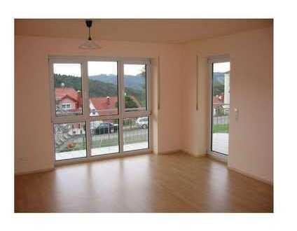 Sanierte sonnige 2-Zimmer-Wohnung in Wilhelmsfeld