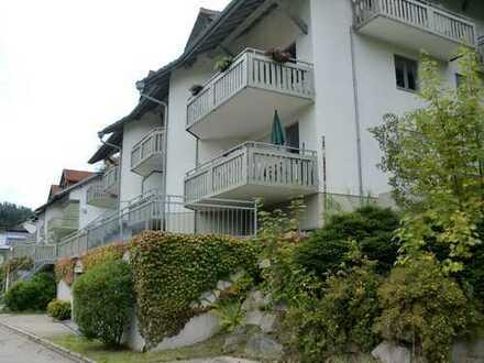 Todtmoos im Schwarzwald - 9 Wohneinheiten zur Kaptialanlage oder Eigennutzung