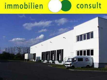 1.192 m² bis 4.297 m² Lagerhalle + Büro zu vermieten