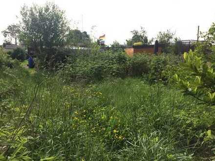Gartengrundstück in Neuland