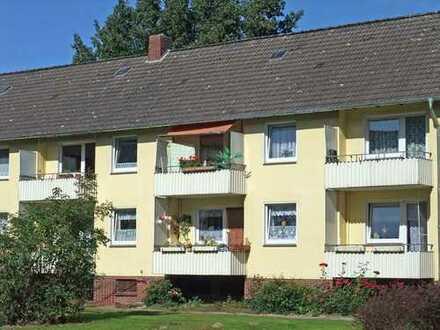 Wohnung mit Balkon sucht neue Sonnenanbeter