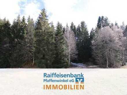 5 Wald- und Wiesen Grundstücke mit insgesamt ca. 6.820 m²