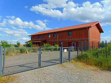 Skandinavisches Niedrigenergie-Holzhaus! Vielseitig nutzbare Wohn-und Gewerbeimmobilie!