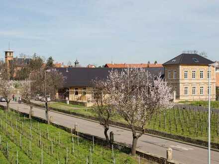 Gelegenheit im historischen Weingut Biffar - Repräsentative Büro-/Ausstellungsräume!