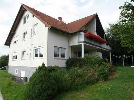renovierte 2-Zimmer-Wohnung mit Einbauküche und Stellplatz in Grumbach