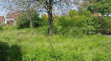 Grundstücke zur privaten Bebauung in Erfurt-Molsdorf, bauträgerfrei
