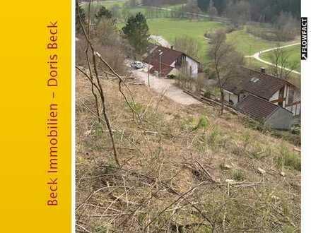 Residieren im Großen Lautertal - weitläufiges Grundstück, flexible Bauweise