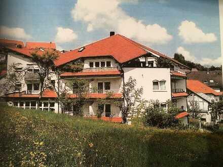 2 1/2 Zi. Dachstudio Wohnung in Lorch-Weitmars, ruhige Lage mit herrlicher Aussicht