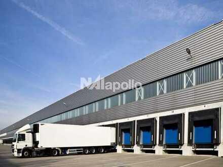Provisionsfrei!  Top Logistikstandort   ca. 28.000 m² Logistikfläche   Bezug 2020