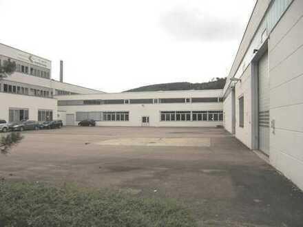 1270 m² Lagerhalle mit guter Verkehrsanbindung