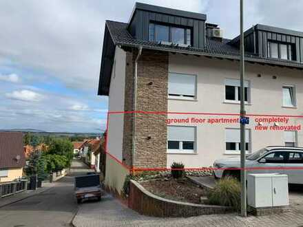 Wonderful, nice and completely renovated - your new apartment in Hauptstuhl