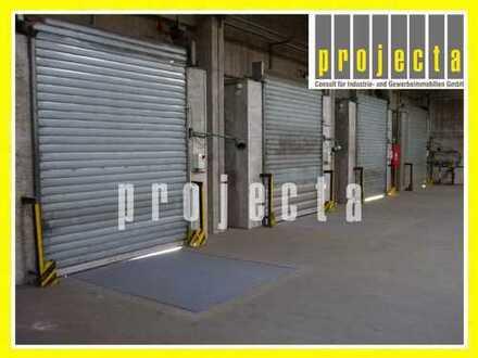 PROVISIONSFREI: ca. 1.500 m² Hallenfläche | 7,00m UKB | 4 Rampentore *mit Reservefläche*