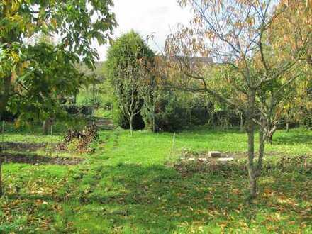 Herrlicher Garten im Ortskern von Walheim