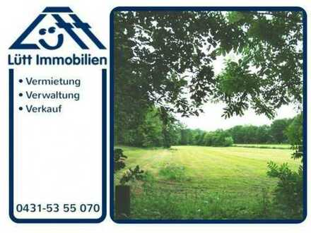 ~~~ Tolles Baugrundstück in Schleswig-Holstein ~~~
