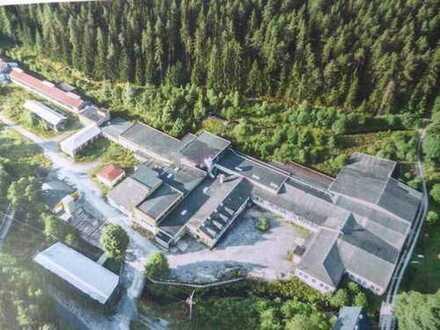Ehemalige Industrieanlage mit Wasserkraftwerk in idyllischer Lage an der Fichtelnaab