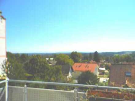 Atemberaubender Bergblick von der 4 Zi-Whg./Wohnbüro in Starnberg-Söcking genießen!