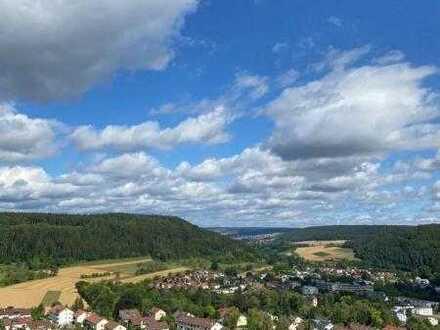 Panoramablick über den Dächern von Nagold!!