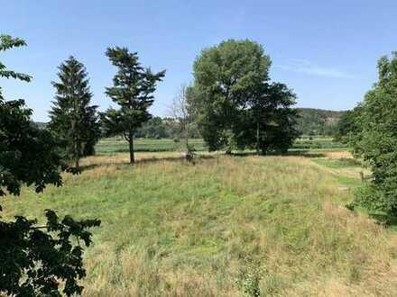 Schönes Grundstück mit unverbaubarem Elbblick an der Weinstraße in Diesbar-Seußlitz
