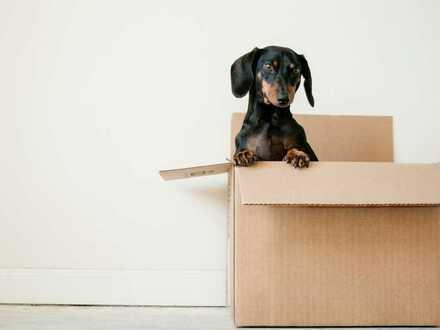 Kisten auspacken und einziehen. Den Rest machen wir für Sie!