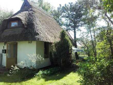 Schönes Sommerhaus mit drei Zimmern in Rügen (Kreis), Insel Hiddensee