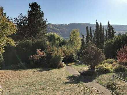 Traumhaftes Parkgrundstück in bester Aussichtslage von Norheim