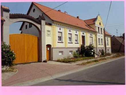 Vollständig renovierte 3-Zimmer-Dachgeschosswohnung mit Einbauküche in Zeddenick