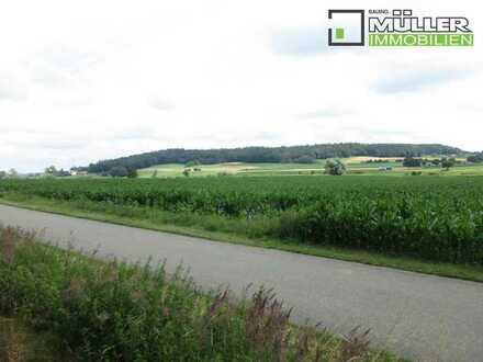 # Landwirtschaftliches Grundstück - Gemarktung Loppenhausen #
