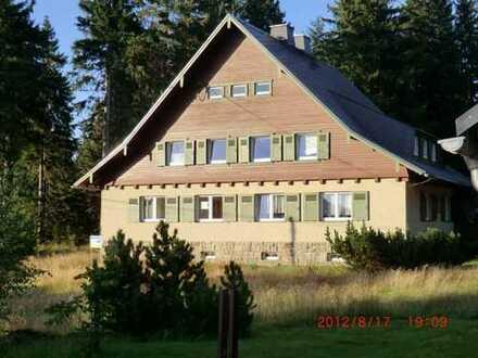 Vollständig renovierte 3-Zimmer-EG-Wohnung mit EBK in Klingenthal/Mühlleithen in ruhiger Waldlage