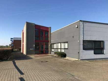 Lager 4: ca. 110 m² Hallen- und Lagerflächen mit flexiblen Nutzungsmöglichkeiten