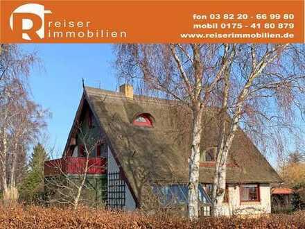 Boddenblick + Wiese + Natur und ein reetgedecktes Wohnhaus