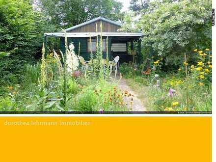 Natur pur: Herrlicher Waldgarten mit Schutzhütte