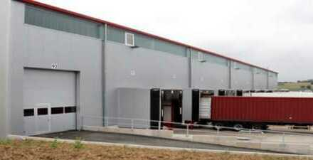 """""""BAUMÜLLER & CO."""" - direkter Anschluss an A3 / A40 / A59 - 15.000 m² Hallenfläche"""