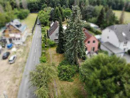 Bauherren aufgepasst! Großes Baugrundstück zwischen Dellbrück und Refrath.
