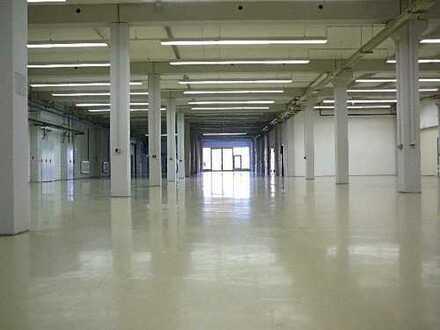 ebenerdige Montagehalle 1200 qm