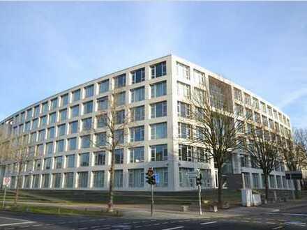 Coworking Space an der Bonner Rheinaue zu vermieten