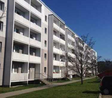 ERSTBEZUG! Frisch renovierte 3-Zimmer-Wohnung