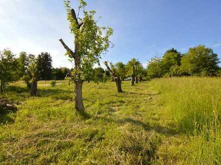 Mit diesem Gartengrundstück kann die Sommersaison 2021 beginnen!