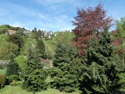 Grundstück mit altem Baumbestand