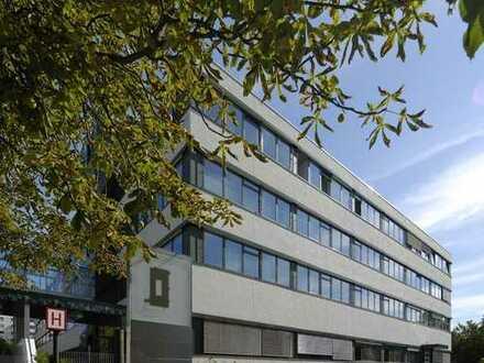 Bürofläche, 437 m², sofort nutzbar