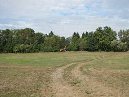 Rarität in der Uckermark, idyllisch gelegene Hofstelle in Alleinlage, umgeben von malerischer Natur