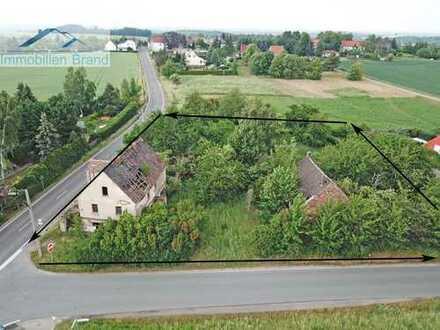 Baugrundstück mit 2976qm in Meuselwitz OT Neupoderschau